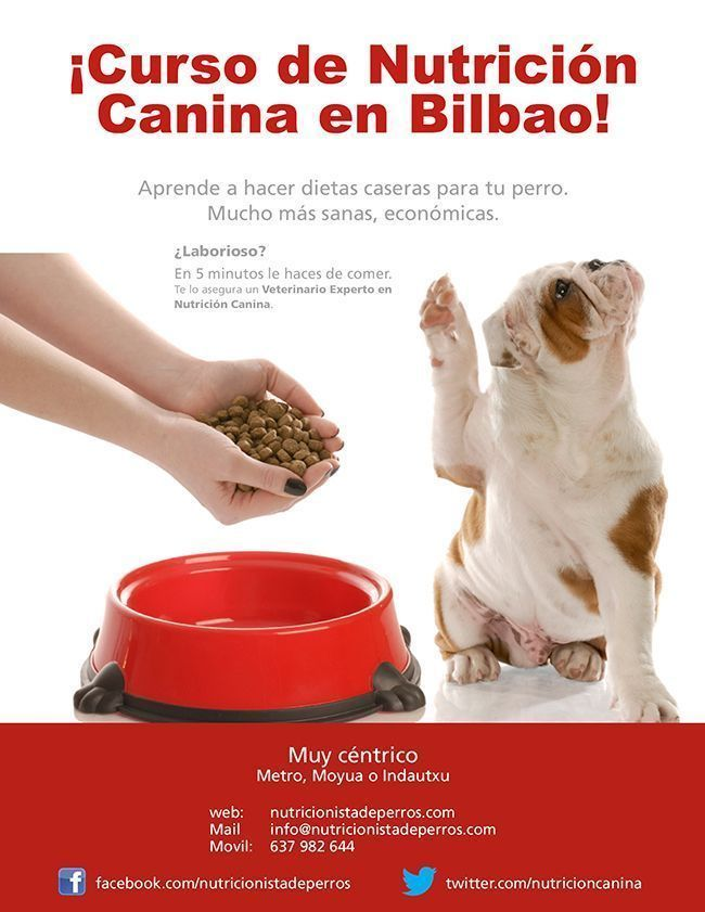 CartelCursosBilbao