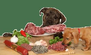 Alimentos crudos o cocidos (I)*