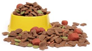 Verdades en la nutrición del perro (44): El problema no ha sido arreglado