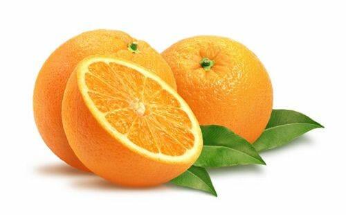 perro vitamina C