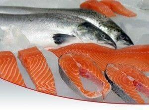 El salmón en los alimentos para perros