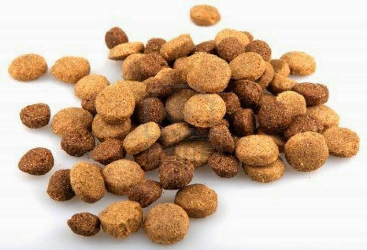 La triste historia de los alimentos comerciales para for Alimento para perros