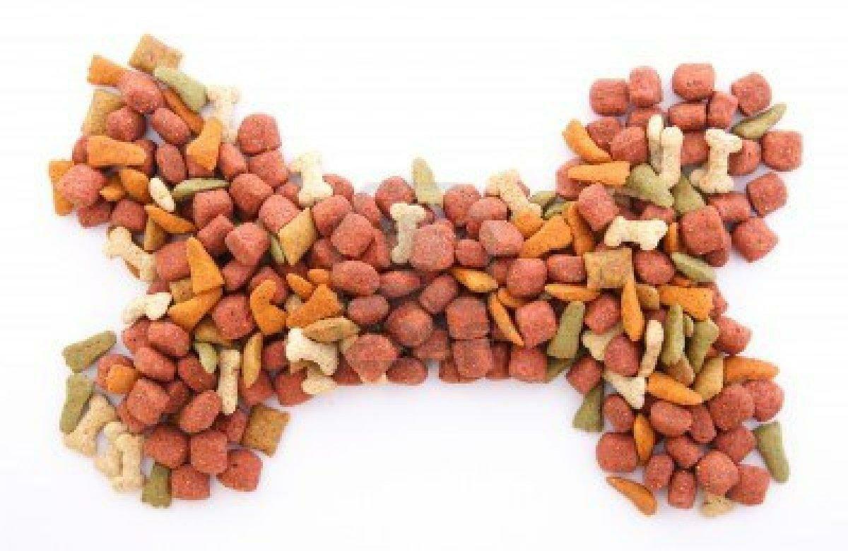 Verdades en la nutrici n del perro 16 el mito de la for Alimento para perros