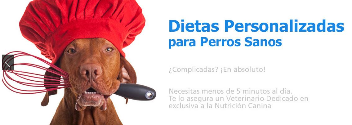 DietaPersonalizada2