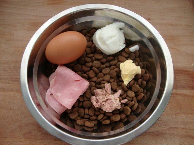 perro proteina y alimento comercial