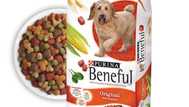 Discover what makes SmartBlend smart. Purina ONE SmartBlend Natural Lamb & Rice Formula adult dry dog food starts with real lamb as the #1 ingredient to help maintain your dog's strong muscles, including a healthy heart.