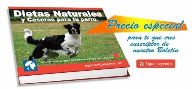 libro dietas naturales y caseras para tu perro pdf