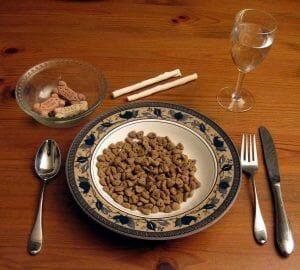 """Verdades en la nutrición del perro (43): Las dietas """"completas"""" provocan enfermedades"""