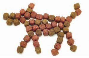 """Verdades en la nutrición del perro (46): """"Digestibilidad"""" no significa """"Digerible"""""""