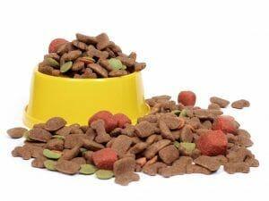 Verdades en la nutrición del perro (52): Lo que aparece en la etiqueta, no es lo que contiene el envase